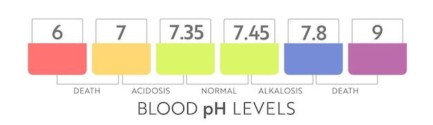 Gamma di ph del sangue umano. grafico e scala dell'illustrazione medica. diagramma acido, normale, alcalino.