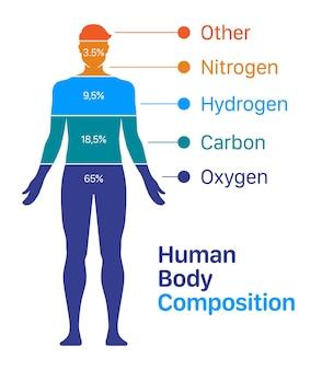 Illustrazione vettoriale del grafico della composizione degli elementi chimici del corpo umano