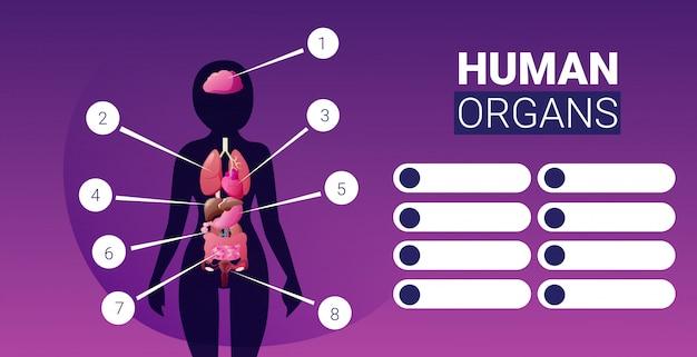 Manifesto infographic struttura del corpo umano con orizzontale femminile del ritratto della scheda di sistema di anatomia delle icone degli organi interni