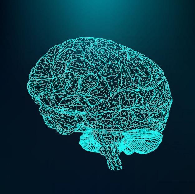 Cervello umano, griglia strutturale di poligoni, reticolo molecolare.