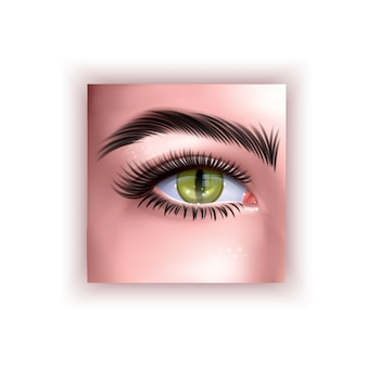 Occhio umano con illustrazione della pupilla del rettile giallo in stile realistico