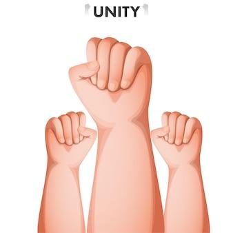 Mano umana del pugno alzata su sfondo bianco per il concetto di unità