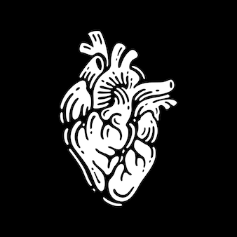 Anatomia del cuore umano isolato su bianco