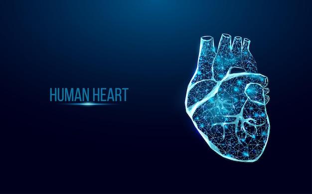 Wireframe del cuore umano. concetto di giornata mondiale del cuore. modello di banner incandescente low poly. astratto moderno futuristico. isolato su sfondo scuro. illustrazione vettoriale.