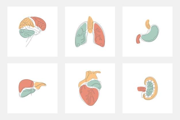 Organo interno umano con minimalista astratto in linea singola