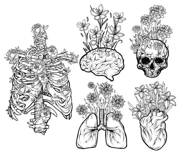 Schizzo di set di fiori piatti di organi umani in bianco e nero