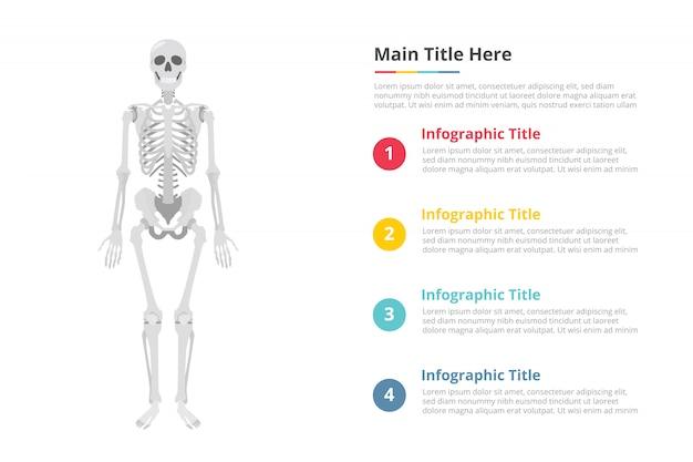 Modello di infographics teschio umano con spazio libero di testo con vari colori e descrizione
