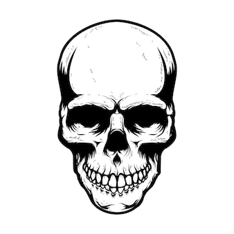 Cranio umano isolato su sfondo bianco. elemento di design per poster, carta, banner, t-shirt, emblema, segno. illustrazione vettoriale