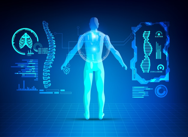 Colonna vertebrale umana