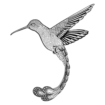 Colibrì, illustrazione di stile zentangle