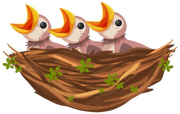 Personaggio dei cartoni animati di pulcini affamati