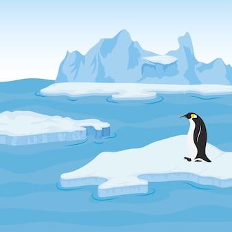 Scena artica del blocco iceberg con il pinguino