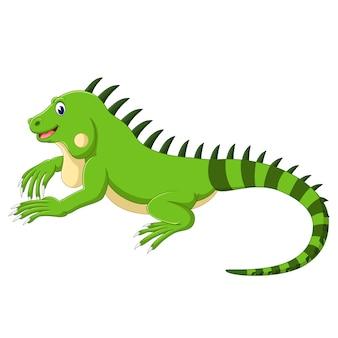 Cartone animato di iguana