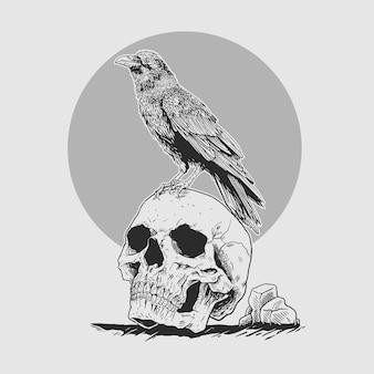 Corvo di illustrasion sulla testa del cranio