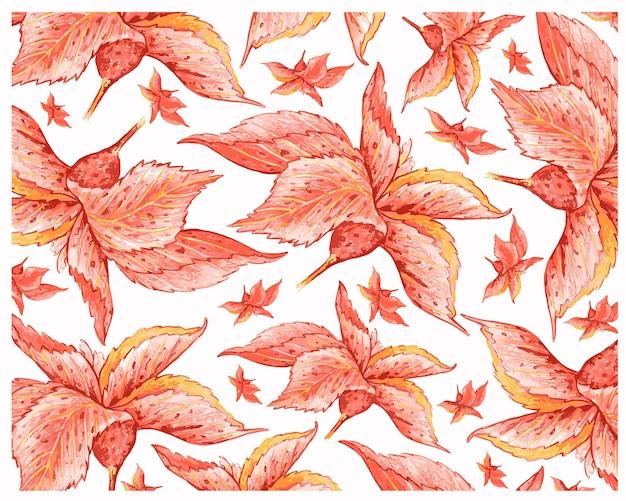 Illustrazione acalypha wilkesiana o jacobs coat plants background