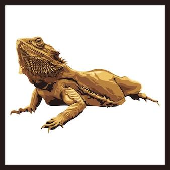 Illustrazione di un drago barbuto.
