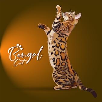 Illustrazione del gatto bengala.