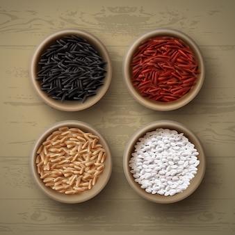 Illustrazione di ciotole con diverse varietà di riso rosso marrone bianco