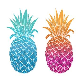 Illustrazione di ananas colorato su sfondo bianco