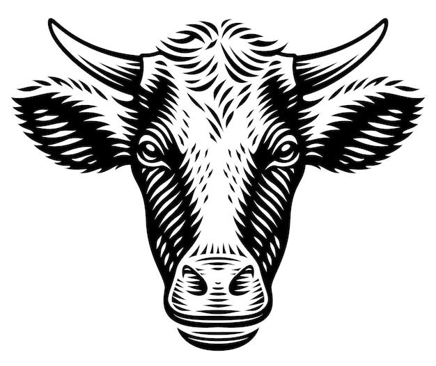 Un'illustrazione di una mucca in stile incisione su sfondo bianco