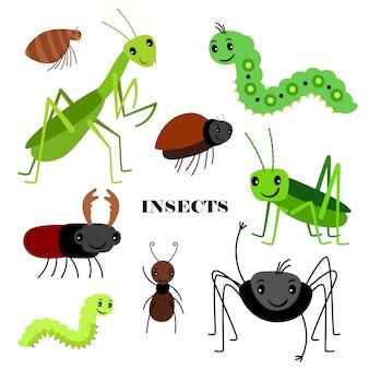 Illustrazione degli insetti striscianti su fondo bianco