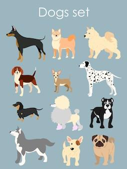 Illustrazione di diversi tipi di cani dei cartoni animati. cani impostati in stile cartone animato piatto su sfondo azzurro.
