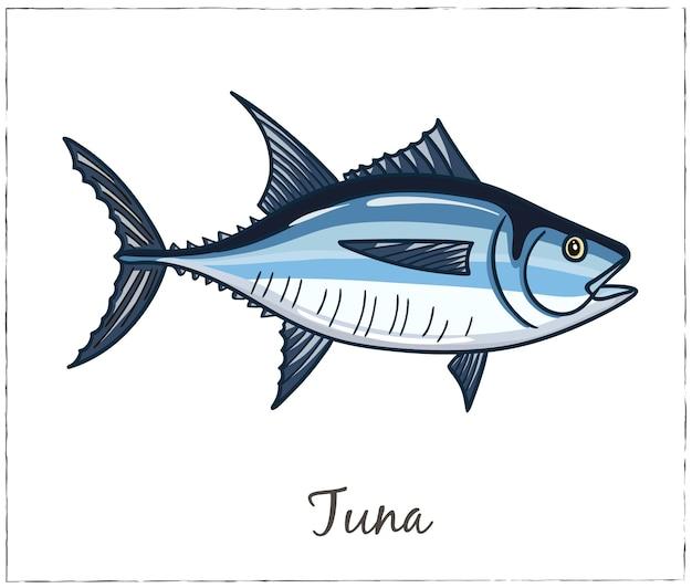 Illustrazione di tonno di pesce isolato su bianco