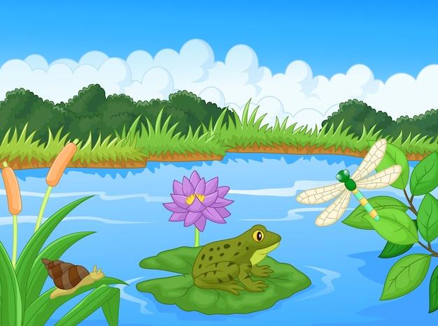 Illustrazione di una rana nel lago