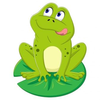 Illustrazione della rana verde che si siede su una foglia