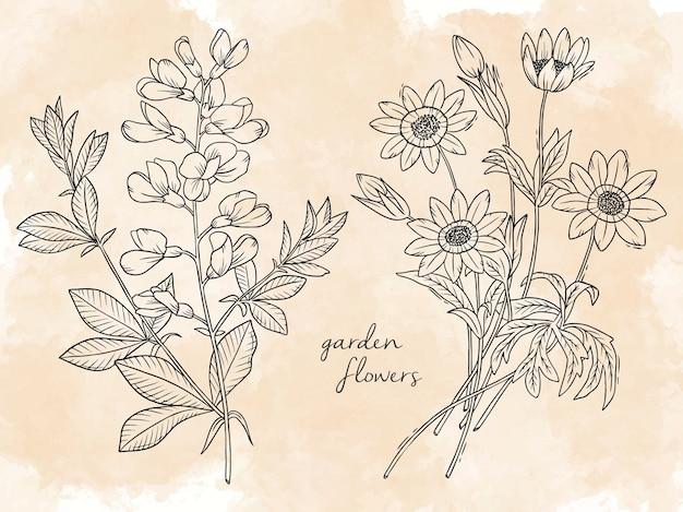 Illustrazione disegnata a mano lineare fiori da giardino
