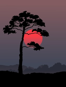 Illustrazione di albero solitario e sole
