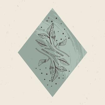 Illustrazione di loghi mistici ed esoterici in uno stile lineare minimal alla moda. emblemi in stile boho - piante forestali