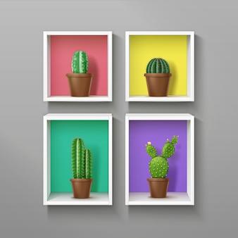 Illustrazione di scaffali colorati quadrati e ractangle realistici con diversi tipi di cactus