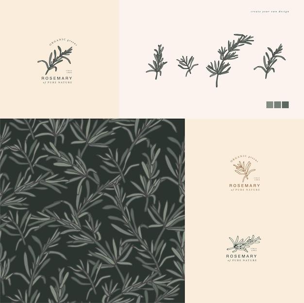 Stile vintage di illustrazione ramo di rosmarino inciso