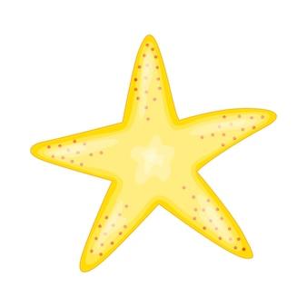 Illustrazione - stella marina. illustrazione vettoriale isolato su sfondo bianco.
