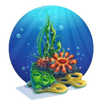 Illustrazione alghe subacquee