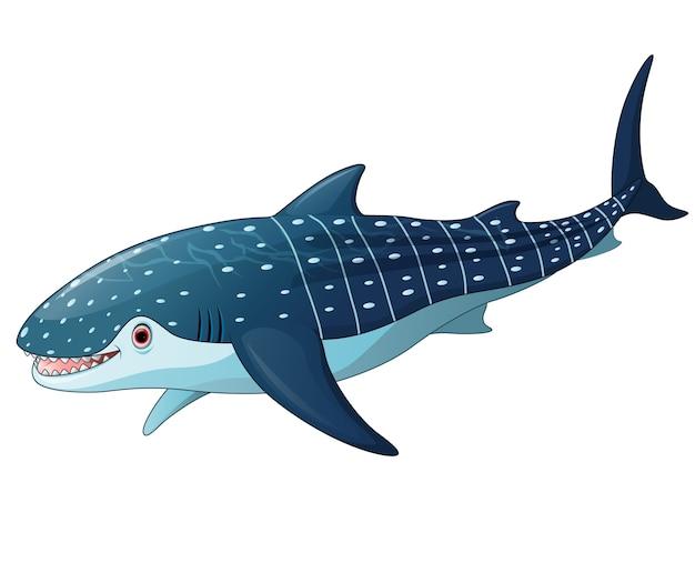 Illustrazione di whaleshark Vettore Premium