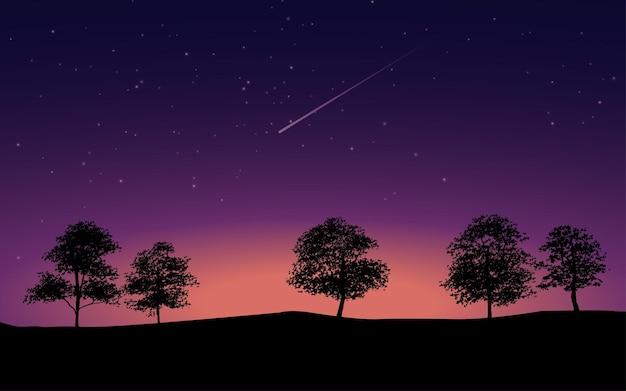 Illustrazione con alberi e notte stellata