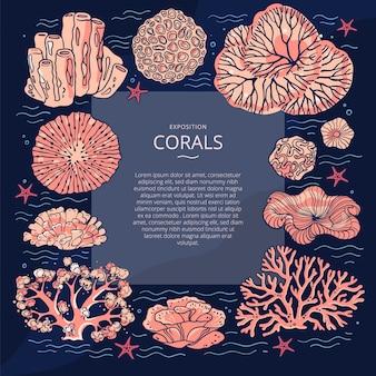 Illustrazioni di coralli. modello con coralli intorno al testo e linee ondulate.