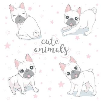 Insieme delle illustrazioni di piccolo bulldog francese bianco sveglio.