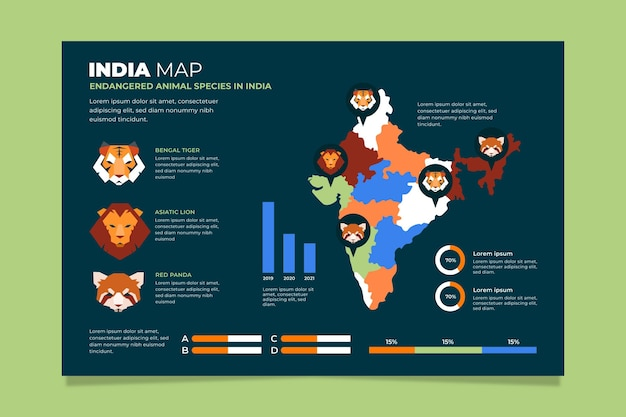 India mappa infografica design piatto
