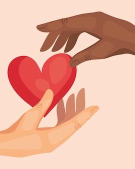 Mani umane interrazziali che tengono cuore