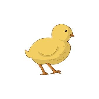 Pollo isolato su sfondo bianco. illustrazione vettoriale disegnato a mano.