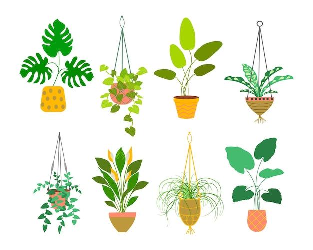 Fioriera dettagliata appesa isolata realizzata in cordoncino di cotone, piante in vaso per interni ed esterni o in ufficio, giardino paesaggistico. Vettore Premium