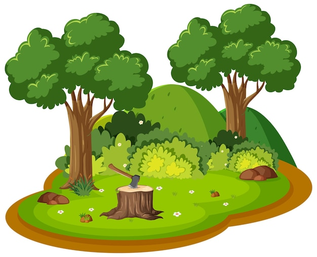 Isola isolata della foresta della natura