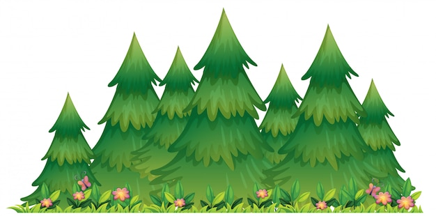 Illustrazione isolata degli alberi della natura
