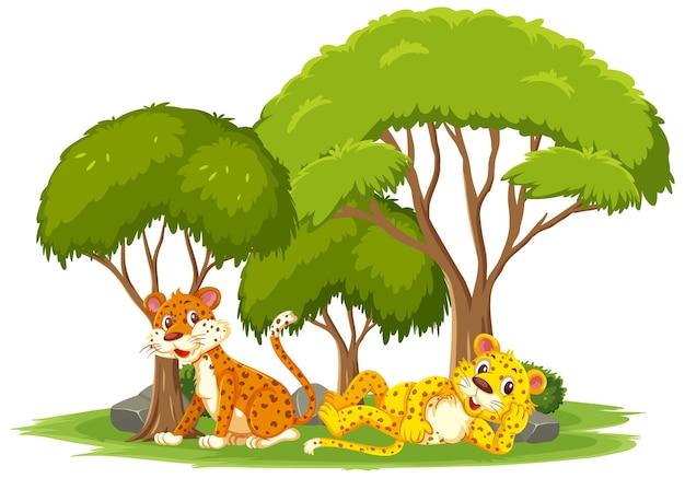 Scena isolata con simpatici leopardi