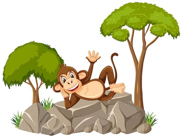 Scena isolata con scimmia carina posa sulla pietra