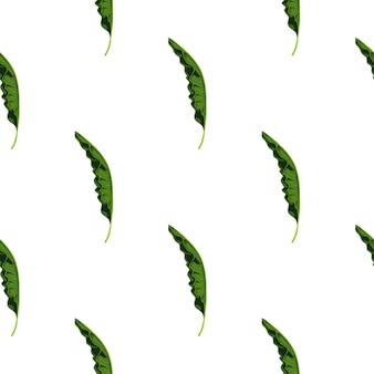Modello senza cuciture isolato con stampa di forme di fogliame di palma verde poco. sfondo bianco. stile semplice.