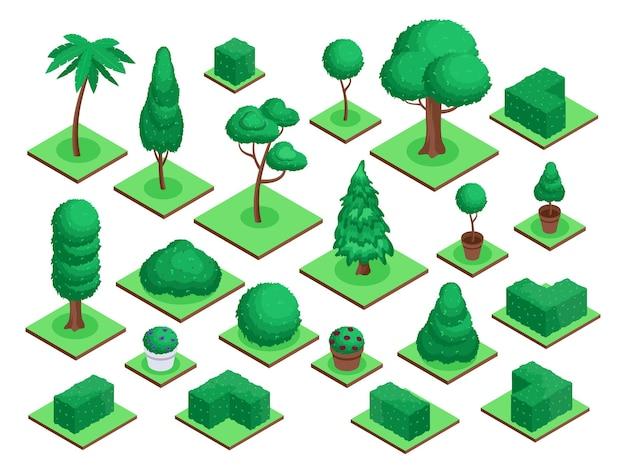 Alberi 3d isometrici parco cittadino o pianta forestale cespuglio fiori vaso abete palma elementi paesaggistici